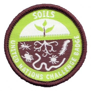 Soils - UN Challenge badge (Pack of 10)